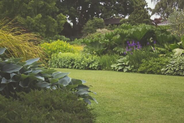 Zo onderhoud je jouw tuin!
